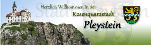Logo_Pleystein-300x90